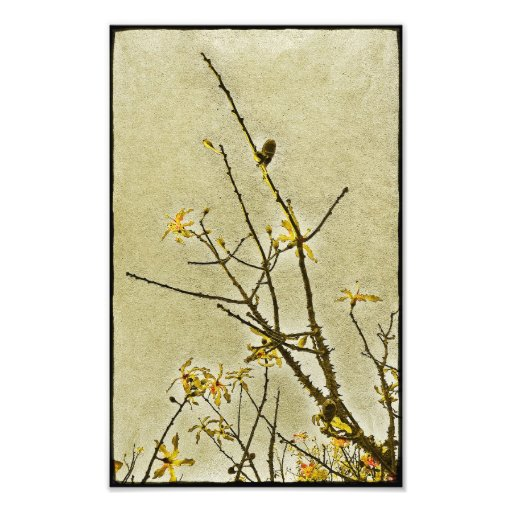 Floral Decorative Nature Photographic Print