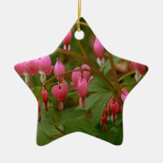 Floral Display Ceramic Star Decoration