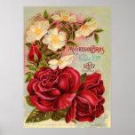 Floral Gem Roses Vintage Flower Catalogue Cover