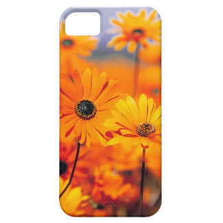 Floral Iphone 5 Universal Case