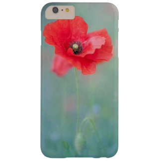Floral iPhone 6 Case  / Cover / Protection