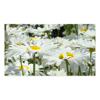 Floral nature Business Cards Daisy Flowers