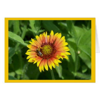 Floral Notecard with Bee on Guillardia