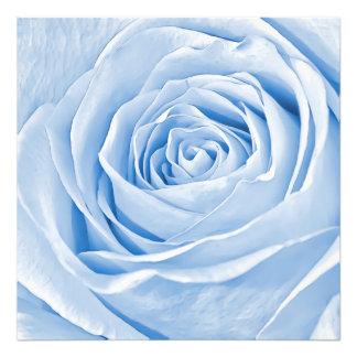 Floral Photo Dainty Light Blue Rose