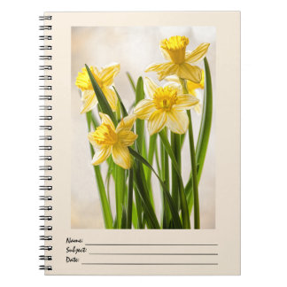 Floral Photography:  Yellow Spring Daffodils Notebook