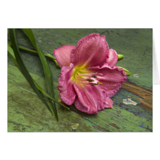 Floral Pink Lily Flower Blank Notecard Note Card