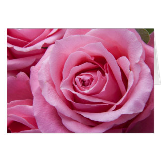 Floral Pink Rose Flower Hello Thinking of You Love Card