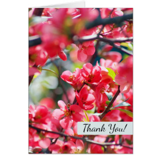 Floral Red Blooms Pretty Spring Thank You Flowers Card