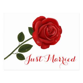 Floral Red Rose Flower - Wedding Party Postcard