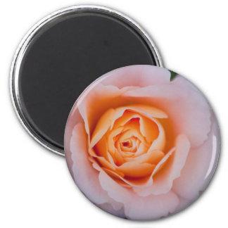 Floral Rose 6 Cm Round Magnet