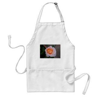 Floral Rose Standard Apron