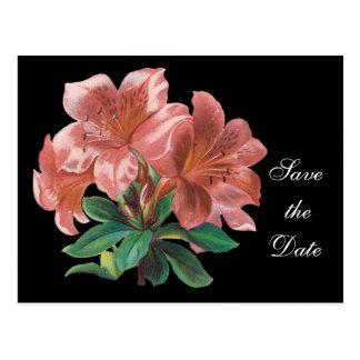 Floral Save the Date Postcard--Customizable Postcard