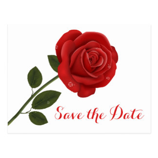Floral Save the Date Wedding  Red Rose Flowers Postcard