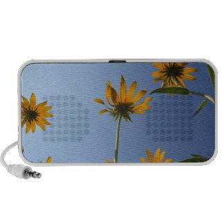 floral speakers