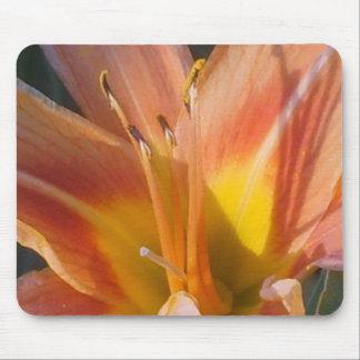 Floral Sunburst Mouse Pad
