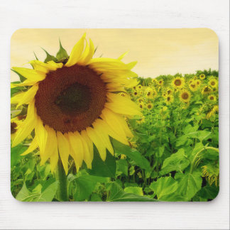 Floral Sunflower Green And Yellow Flower Mouse Pad