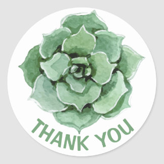 Floral Thank You Green Succulent Watercolor Cactus Classic Round Sticker