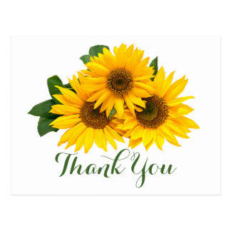 Floral Thank You Sunflowers Yellow & Green Flowers Postcard