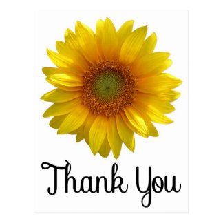 Floral Thank You Yellow Sunflower Flower Postcard