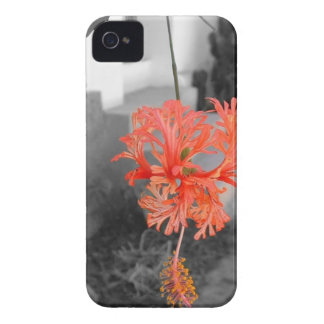 Floral Theme Case-Mate iPhone 4 Cases