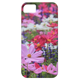 Floral, wildflowers, pinks, white, blue, green iPhone 5 cover
