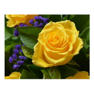 Floral Yellow Rose & Purple Flowers Hello Love Postcard
