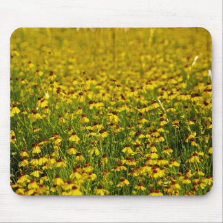 Floral yellow wildflowers photo mousepad