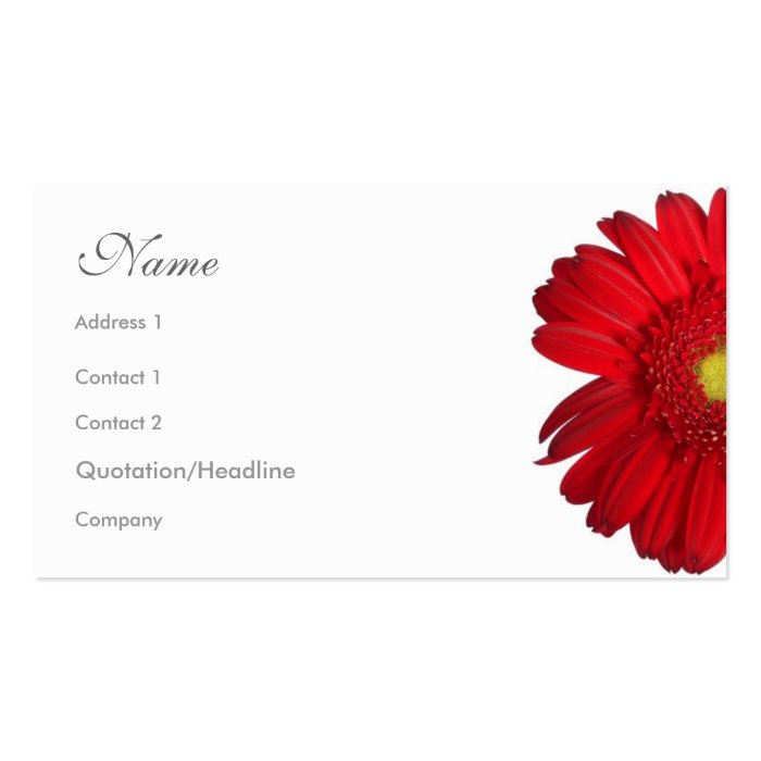 Florals - Red Daisy Pack Of Standard Business Cards