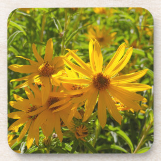 """Flores en mi hierbas """" flowers in my weeds """" coaster"""