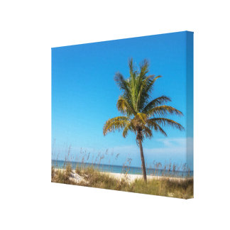 Florida beach palmtree canvas