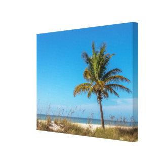 Florida beach palmtree canvas