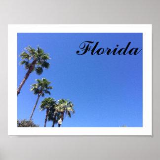 Florida Blue Sky Poster