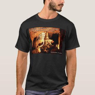 FLORIDA CAVERNS STATE PARK - Marianna, Florida T-Shirt