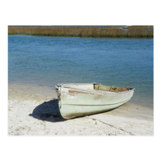 Florida Coastal Life Postcard