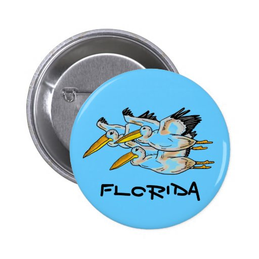 Florida colorful pelicans button