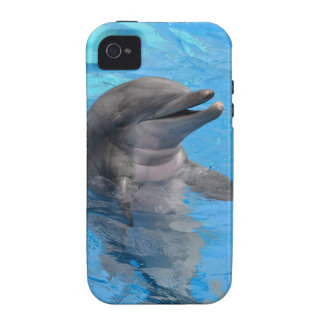 Florida Dolphin iPhone 4/4S Covers