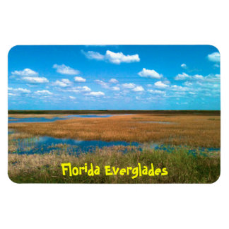 Florida Everglades Magnet