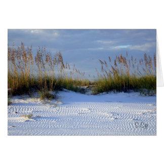 Florida Gulf Coast Beach Card