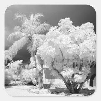 Florida Keys house and its palm trees, USA. 2 Square Sticker