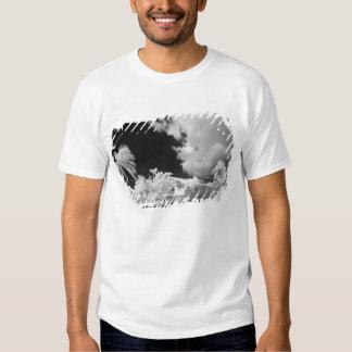 Florida Keys house and its palm trees, USA. T-shirts