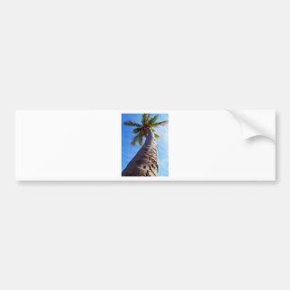 Florida Palm Tree Bumper Sticker
