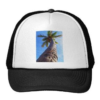 Florida Palm Tree Trucker Hats