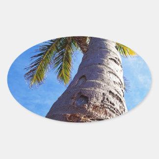 Florida Palm Tree Oval Sticker