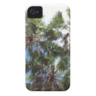 Florida Palms Case-Mate iPhone 4 Cases