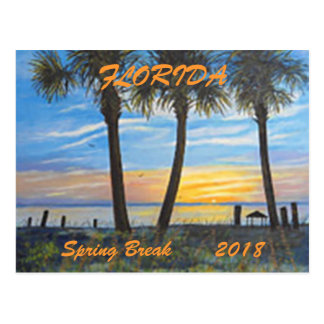 """FLORIDA PALMS SPRING BREAK POSTCARD 2018"""