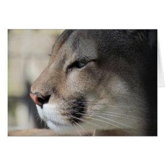 Florida Panther Birthday Card