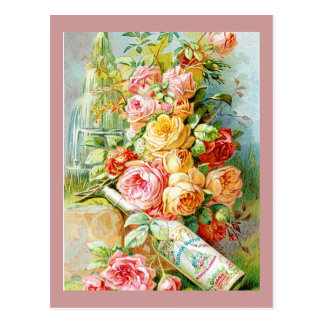 Florida Perfume Water with Cabbage Roses Postcard