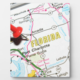 Florida Plaque