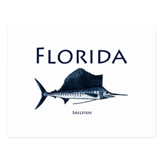 Florida Sailfish Postcard
