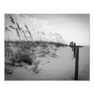 Florida Sand Dunes Photo Print